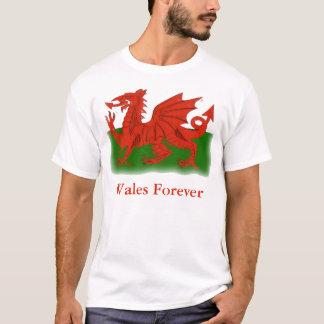Camisa vermelha do dragão