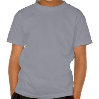 Camisas havaianas dos miúdos do ouriço e da tshirts