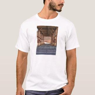 Camiseta 2010-06-28 cidade fantasma da chita de C (60)