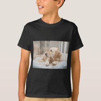 Camiseta 34137641_xxl