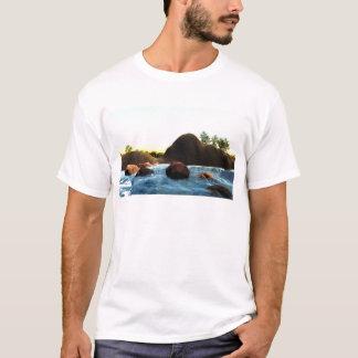 Camiseta 35fca8_2de3b51ddf0442a59af5adb37a8659c2~mv2_d_2272