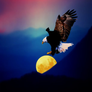 Camiseta A águia americana persegue a Lua cheia 8b53471c5b0aa