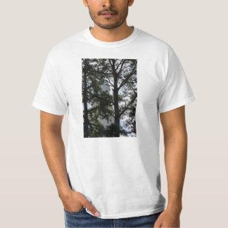 Camiseta A busca e você encontrarão