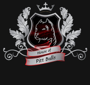 0ac6baa0fb Camiseta A casa de touros de Pitt Crest o design azul das