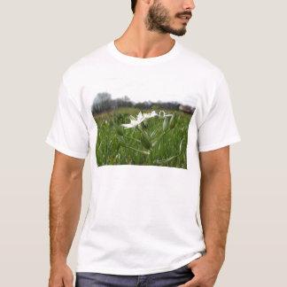 Camiseta A estrela de Bethlehem floresce o umbellatum do