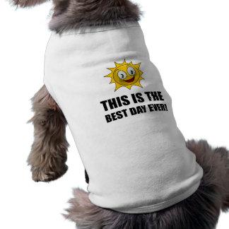 Camiseta A melhor luz do sol do dia nunca