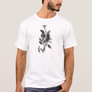 Camiseta A planta do cacau (chocolate cru)