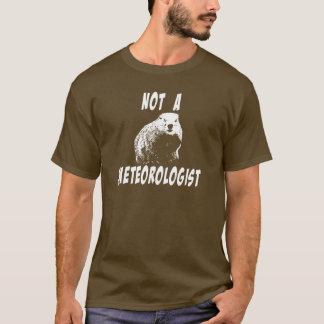 Camiseta A verdade sobre Groundhogs