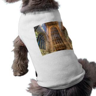 Camiseta Abadia do banho