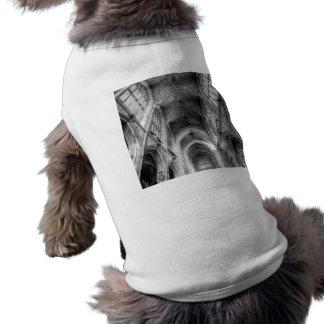 Camiseta Abadia Somerset Inglaterra do banho