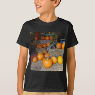 Camiseta Abóboras na palha
