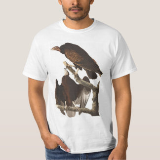 Camiseta Abutre de turquia de Audubon