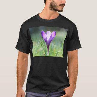Camiseta Açafrão roxo no primavera