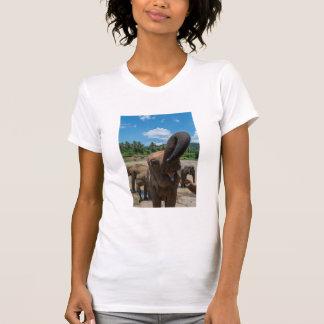 Camiseta Água potável do elefante, Sri Lanka