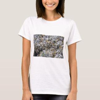 Camiseta Alga