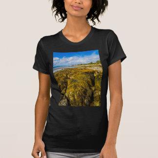 Camiseta Alga da praia