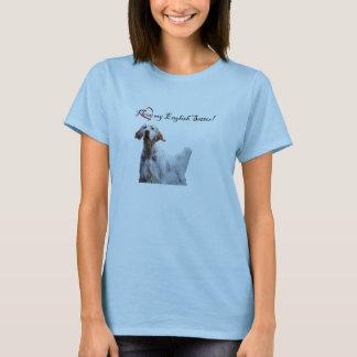 Camiseta ame meu t-shirt do setter inglês