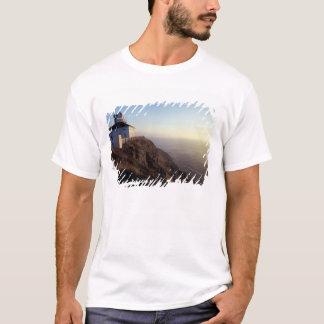 Camiseta America do Norte, Canadá, Terra Nova, lança do