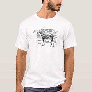 Camiseta anatomia 1 do cavalo