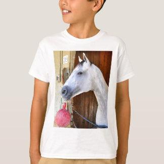Camiseta Âncora para baixo - Pletcher