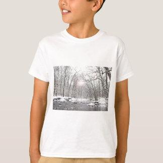 Camiseta Angra - inverno