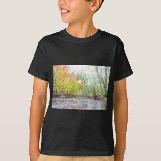 Camiseta Angra - queda