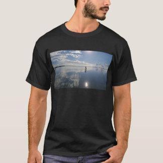 Camiseta Aperfeiçoe a água imóvel