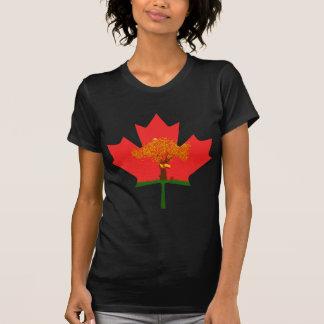 Camiseta APH-Canadá (quem?)
