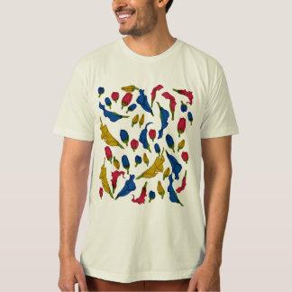 Camiseta Arco-íris Aethiopica