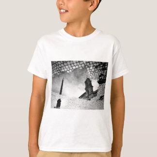 Camiseta Arte refletida