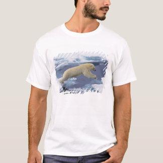 Camiseta Ártico, Svalbard, urso polar que estende e