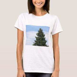 Camiseta Árvore de abeto verde contra um céu claro