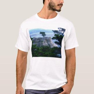 Camiseta Árvore de Monterey