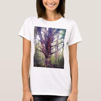 Camiseta Árvore enevoada