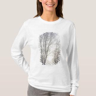 Camiseta Árvores brancas em um dia nevado