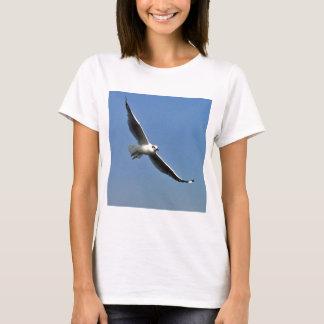 Camiseta As gaivotas são pássaros bonitos