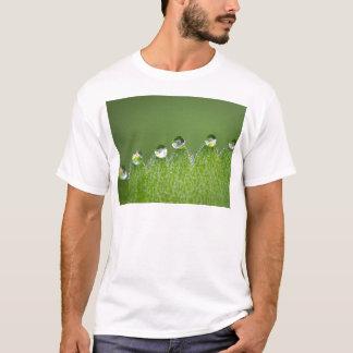 Camiseta As gotas da água da natureza conectam com o