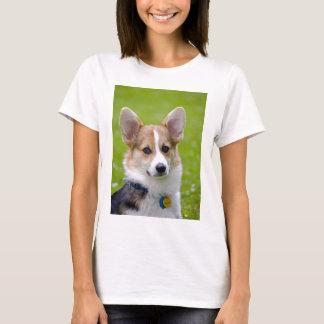 Camiseta As partes superiores das mulheres de Tucker