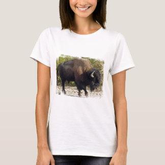 Camiseta As senhoras americanas do búfalo couberam o