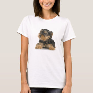 Camiseta As senhoras do yorkshire terrier couberam o
