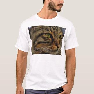 Camiseta Aslan o gato de gato malhado de cabelos compridos