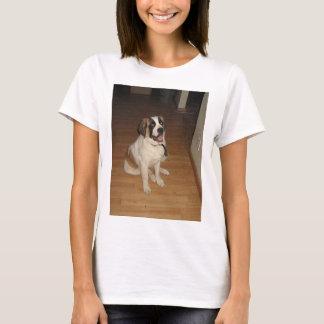Camiseta assento de St Bernard