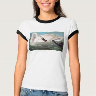 Camiseta Audubon: Cisne de trompetista