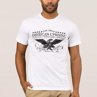 Camiseta AUI Washington 2010