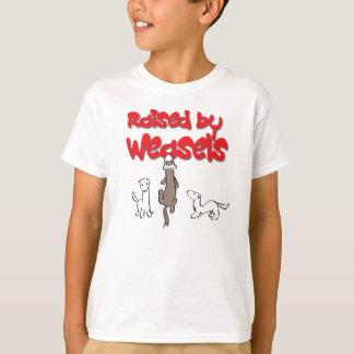 Camiseta Aumentado pela doninhas