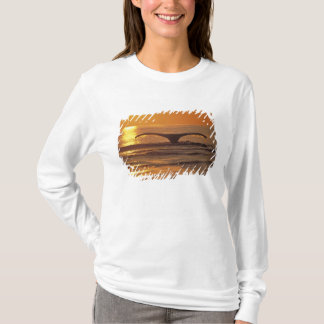 Camiseta Baleia de Humpback