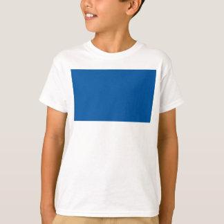 Camiseta Bandeira de Assen