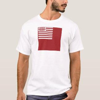 Camiseta Bandeira de Brandywine