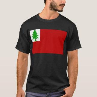 Camiseta Bandeira de Nova Inglaterra