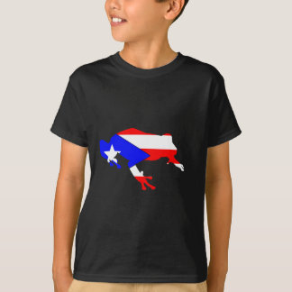 Camiseta bandeira do coqui